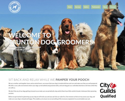 dog-grooming-website-design