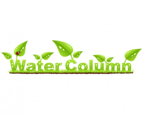 water-column-logo-design